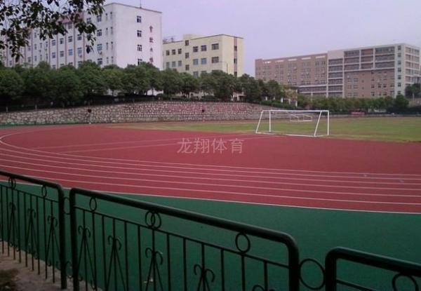 广西河池高级中学透气型塑胶跑道